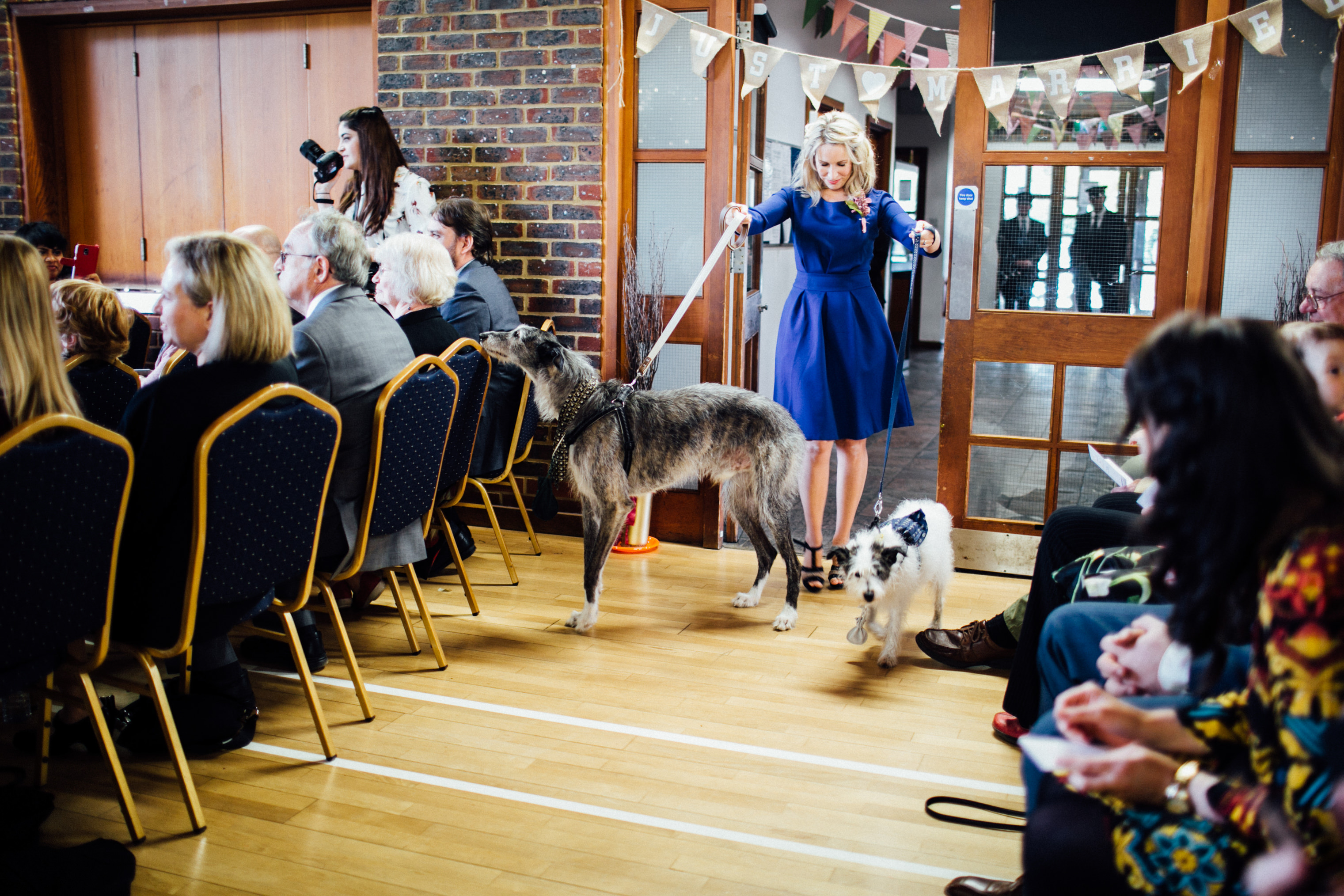 autumn wedding in london wedding photographer dog ring bearer